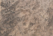 Yellow contrasting sandstone texture with wave effect - Light and dark beige wall grain background with copy space
