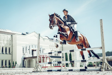 Beautiful graceful horse jumping over the barrier