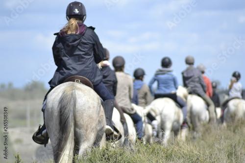 Fototapeta Passeggiata a cavallo in Camargue obraz
