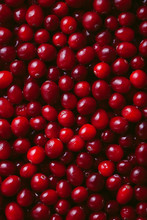 Close Up Of Fresh Cranberries