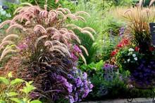 Summer Gardenscape With Waving...