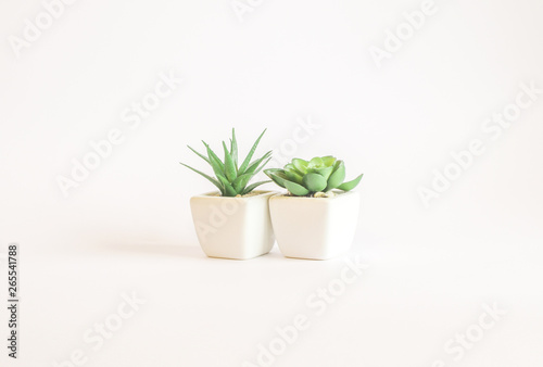 Poster Vegetal Plastic plant suculent in vase - isolated on white background