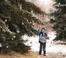 Young Boy Decorating Evergreen Tree With Christmas Balls Outdoors.