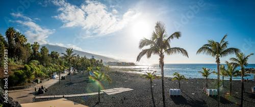 Fotografie, Obraz  Tenerife - Puerto de la Cruz