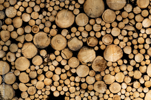 Poster Firewood texture Stack of sawn logs. Natural wooden decor background.