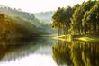 Leinwandbild Motiv Beautiful landscape view of pine forest tree and lake view of reservoir.