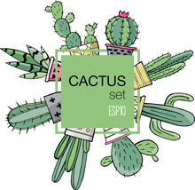 Houseplant. Prickly Green Cactuses In Cute Flowerpots. Pot Plants. Cute Vector Cactus. Hand Drawn Cactus. Color Illustration With Cactuses And Succulents For Design. Texture With Floral Elements