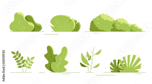 Leinwand Poster Plants set isolated
