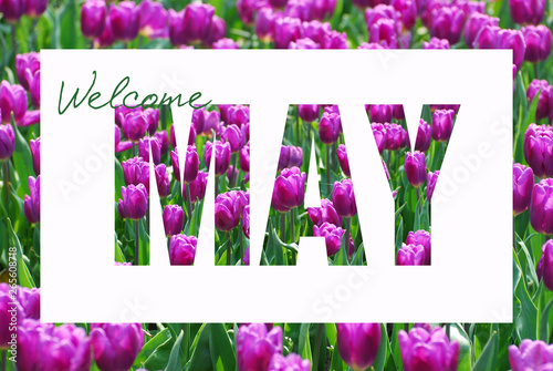 Obraz welcome May background - fototapety do salonu