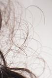 Detail of brown curly hair lying in water in sink. - 265617992