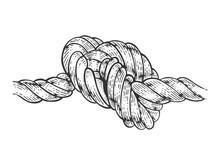 Marine Nautical Knot Sketch En...