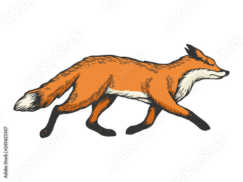 Running fox animal color sketch engraving vector illustration Wallpaper Mural