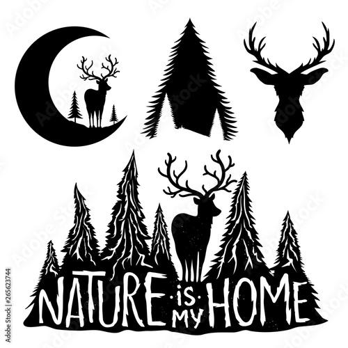 Fotografie, Obraz  Vector set with deers, moon and pine trees