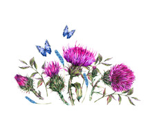 Watercolor Thistle, Blue Butterflies, Wild Flowers Illustration, Meadow Herbs Vintage Greeting Card