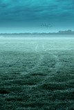 Tire tracks in misty meadow under cloudy sky with birds. - 265638520