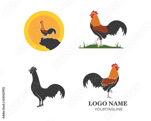 Photo rooster logo vector illustration template