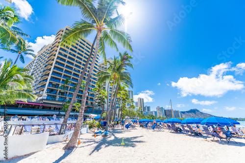 ワイキキビーチの青空と海とヤシの木 Fototapet