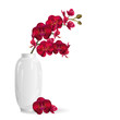 Red orchid flowers in white vase. Realistic vector illustration on white background.