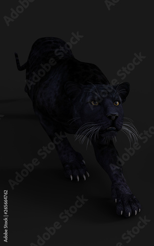Canvas Prints Panther 3d Illustration Black Panther Isolate on White Background with Clipping Path, Black Tiger