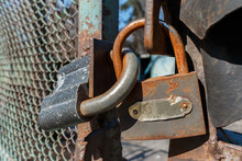 Old Rusty Padlocks Connect The Doors Of The Iron Fence, Close-up, Selective Focus. Metal Lock On A Fence, Security Concept.