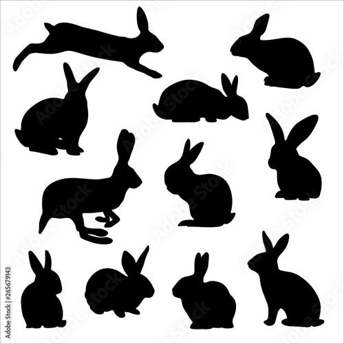 Cuadros en Lienzo silhouettes of easter rabbits