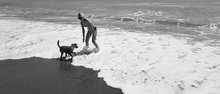 Woman Playing With Dog On Beach Black And White Horizontal Photo