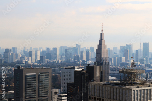 Fototapeta A view of Tokyo with a cell phone radio tower and various buildings obraz na płótnie