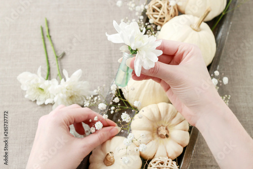 Fényképezés  How to make floral decoration with white pumpkins called baby boo and chrysanthemum flowers, tutorial