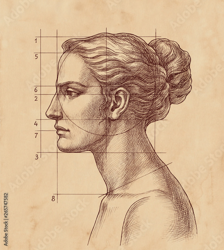 Hand drawn illustration in vintage style, woman's head proportions Canvas