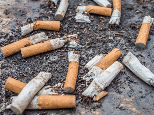Photo Alte Zigaretten Filter im Aschenbecher