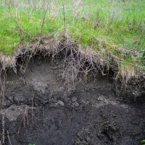 Tablou Canvas Soil Erosion in the Agricultural Field.