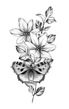 Hand Drawn Butterfly And  Flowers
