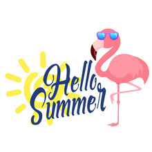 Beautiful Summer Flamingo Vector Illustration