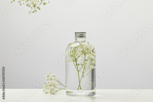 obraz lub plakat organic beauty product in transparent bottle with white wildflowers on grey background