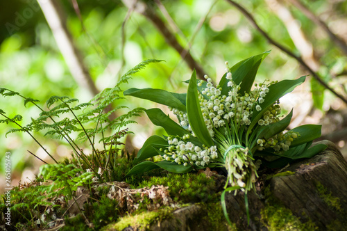 Poster Muguet de mai closeup of lily of the valley bouquet on tree trunk in the forest