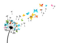 Dandelion With Flying Butterflies And Seeds. Vector Isolated Decoration Element From Scattered Silhouettes. Conceptual Illustration Of Freedom And Serenity.