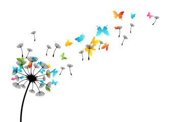 FototapetaDandelion with flying butterflies and seeds. Vector isolated decoration element from scattered silhouettes. Conceptual illustration of freedom and serenity.