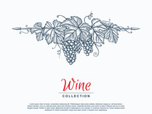 Hand Drawn Grape Wreath. Template For Your Design Works. Engraved Style Vector Illustration.