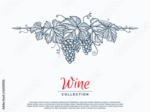 Obraz na płótnie Hand drawn grape wreath