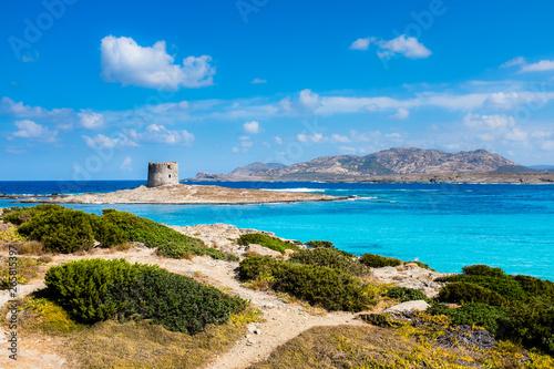 Sardegna, veduta della Spiaggia la Pelosa a Stintino, con il suo mare turchese e la torre aragonese sullo sfondo Wallpaper Mural