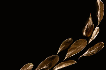top view of golden metal decorative leaves isolated on black with copy space