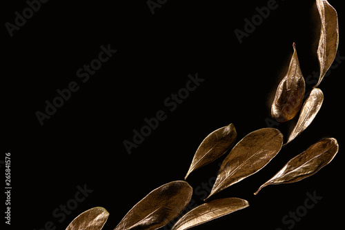 Photo  top view of golden metal decorative leaves isolated on black with copy space