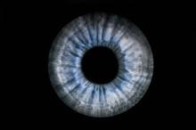 Human Blue Grey Eye Iris. Pupil In Macro On Black Background