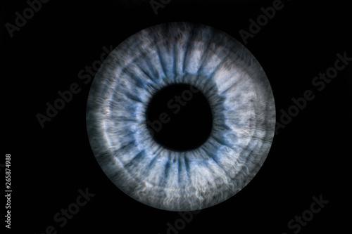 Fotobehang Iris Human blue grey eye iris. Pupil in macro on black background