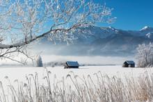 Germany, Upper Bavaria, Werdenfelser Land, Kochel, Winter Landscape, Shack