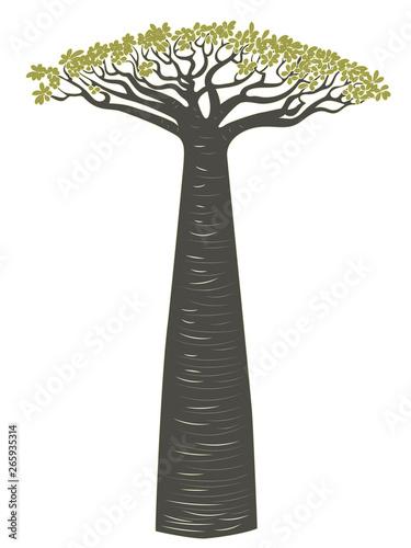 Canvas Baobab tree design