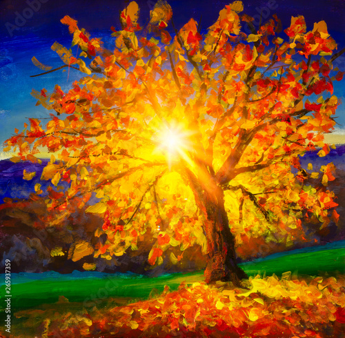 Fototapety, obrazy: Majestic alone beech tree on a hill slope with sunny beams at mountain valley. Dramatic colorful morning scene. Red and yellow autumn leaves. Original oil painting impressionism. Beauty world