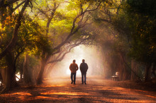 Walking In Wonderland