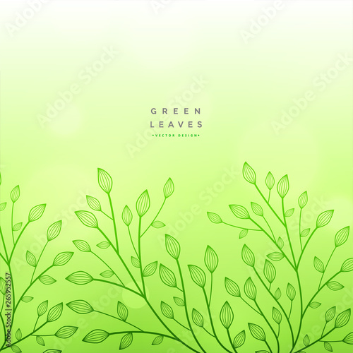 Fototapety, obrazy: green floral beautiful design background