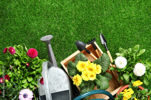 La pose en embrasure Vert Flat lay composition with gardening equipment and flowers on green grass